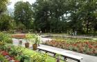 Ogród egzotyczny w Parku w Wilanowie