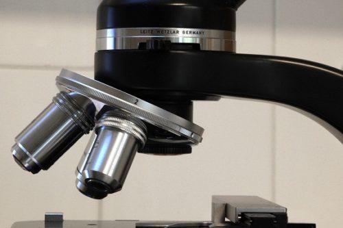 badania krwi pod mikroskopem